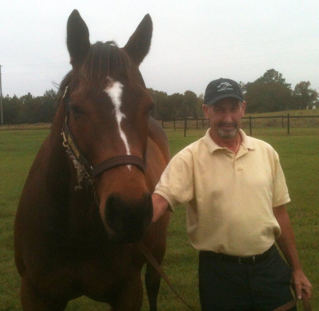 equine injury animal law